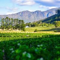Sud Africa Romantic